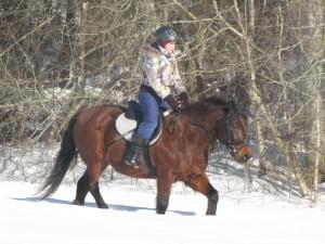 Klinta ar zirgu  Vanadziņš - Alpis.